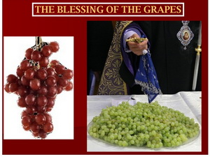 grapes-blessing