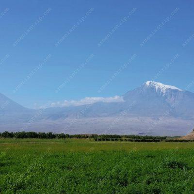 Гора Арарат (вид из Хор-Вирапа)